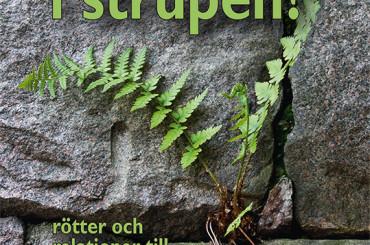 Antologi visar på svenskans rikedom